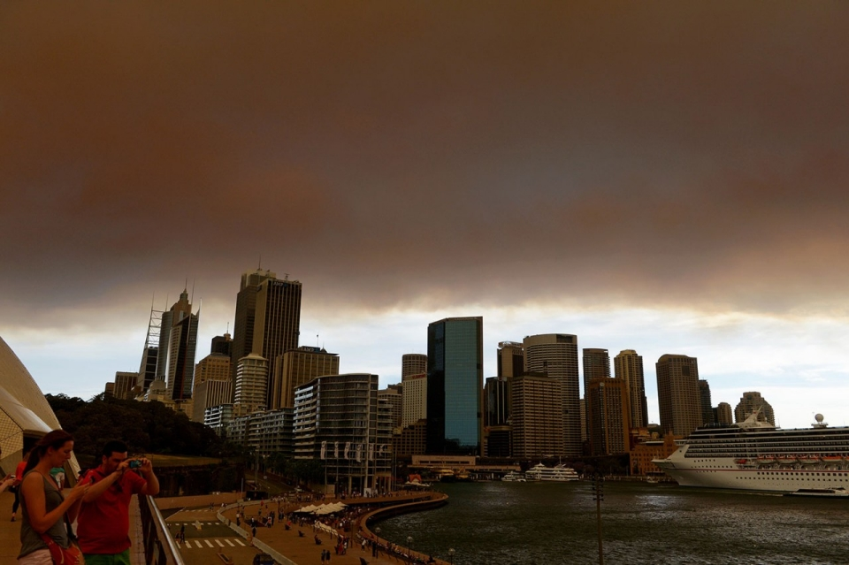 Dog Blanket For Car >> Wildfires destroy homes in Australia | Al Jazeera America