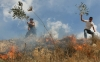 Palestinian boys attempt to put out a fire set by Israeli settlers in an olive tree field on Oct. 1, 2011.