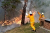 Firefighters work to contain fires from a resident's backyard at Faulconbridge in the Blue Mountains suburb of Australia on Tuesday. Firefighters deliberately merged two major blazes to manage the advancing infernos.