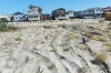 One year later, just an empty stretch of sand in Breezy Point where those homes stood.
