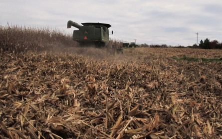 Report: Obama's ethanol policy has ravaged the environment
