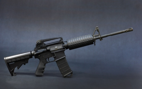 An AR-15 rifle.