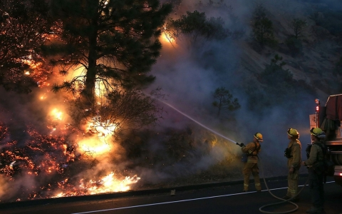 Firefighters douse flames of the Rim Fire on Aug. 24 near Groveland, Calif.