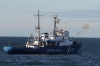 A Russian Coast Guard vessel fires a warning shot. Greenpeace said that the coast guard fired 11 warning shots.