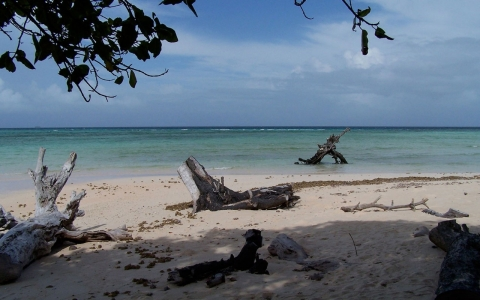 Thumbnail image for Pacific islands hope to persuade world to move on climate change