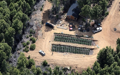 An aerial view of marijuana growers on private land in Humboldt County, Calif.