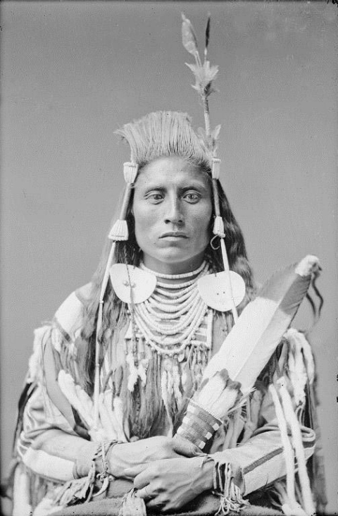 war chief, Plains Indian, Yellowtail