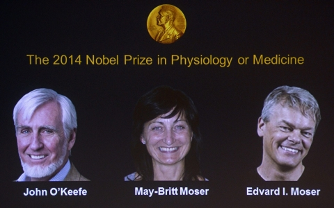 Thumbnail image for Nobel Prize in medicine awarded for discovery of brain's 'GPS'