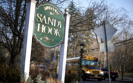 State report: Lack of mental health care contributed to Newtown shootings
