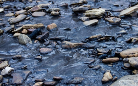 Thumbnail image for Coal slurry spill pollutes W.Va. creek