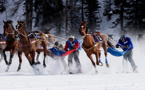 Ski joring racers take the last turn during the White Turf horse racing event in St. Moritz, Switzerland.
