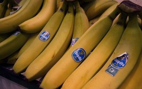 Thumbnail image for Chiquita merger reignites fears of a disappearing banana crop