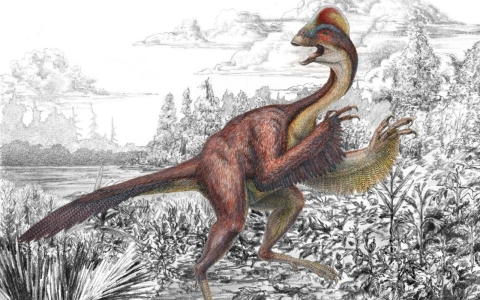 Thumbnail image for Scientists give formal name to 'chicken from hell' dinosaur
