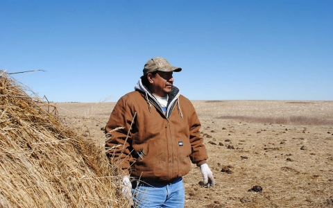 drought, native America, bison, Pine Ridge Indian reservation