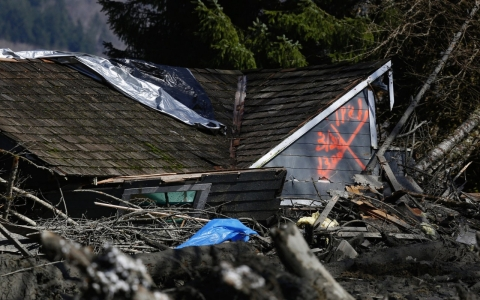 Thumbnail image for 'No signs of life' in Washington mudslide