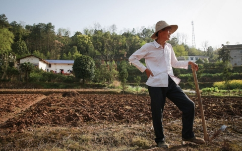 Thumbnail image for China says one-fifth of its farmland is polluted