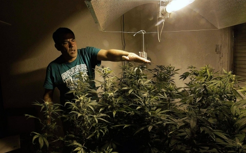 Thumbnail image for Opinion: The real danger of Uruguay's pot legalization