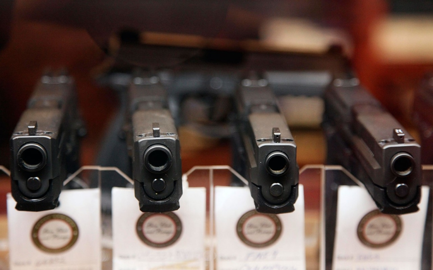 What restrictions, if any, should be put on gun ownership?
