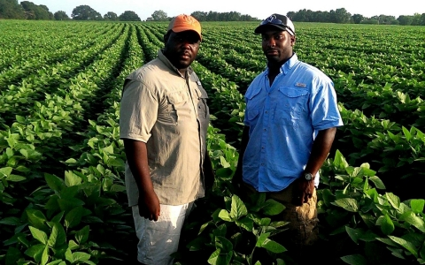 Warren and Chris Ford in their soybean field.