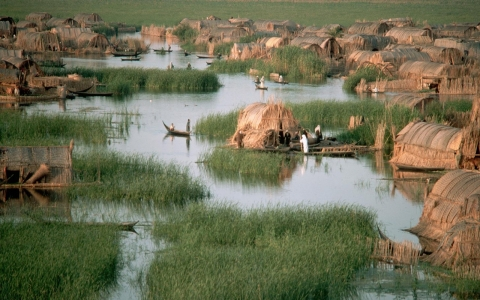 Thumbnail image for Can Iraq's lost marshes be restored?