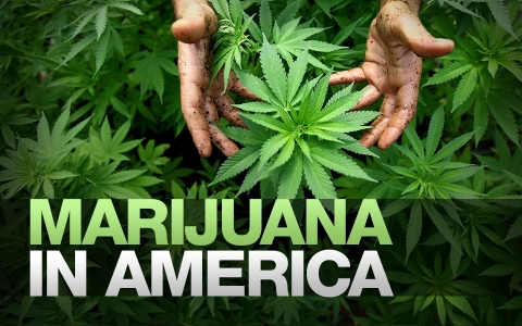 Thumbnail image for Marijuana in America