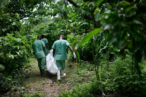 Thumbnail image for Ebola plagues Africa nearly four decades after first occurrence