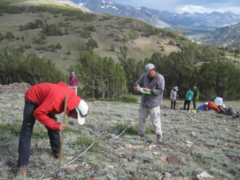 Researchers surveying the habitat of the pika