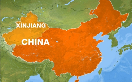 Chinese police kill six in alleged bombing attempt