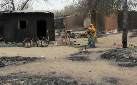 Thumbnail image for Satellite images reveal 'catastrophic' scale of Boko Haram massacres