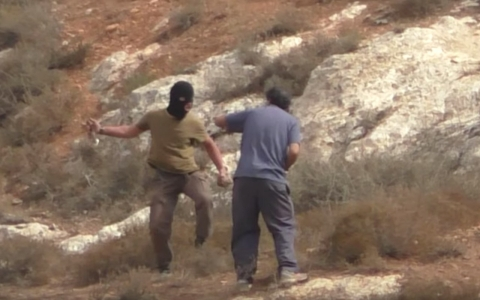 Thumbnail image for Israeli settler attacks rabbi protecting Palestinian farmers