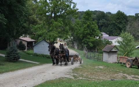 Thumbnail image for Amish country's forgotten measles outbreak