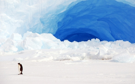 Scientists warn Antarctic melting more extensive than previously thought