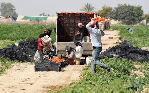 Thumbnail image for Jordan's illegal labor puzzle: Let Syrian refugees work or just survive?