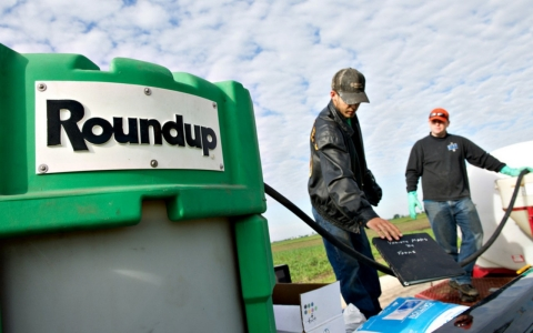 Thumbnail image for WHO: Ingredient in Monsanto Roundup 'probably carcinogenic' to humans