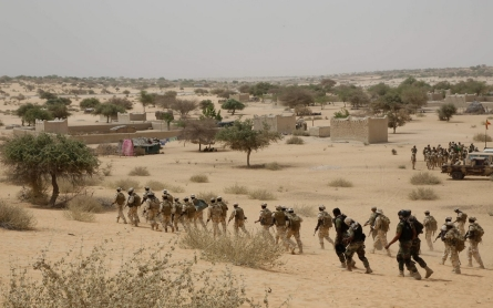 Chad, Niger to launch joint offensive against Boko Haram in Nigeria
