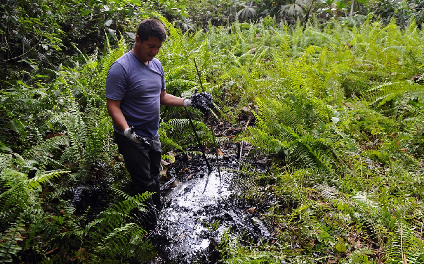 a look at the pollution of the environment by the miners of the amazon Known as tropospheric or ground-level ozone, this gas is harmful to human heath and the environment  ozone pollution.