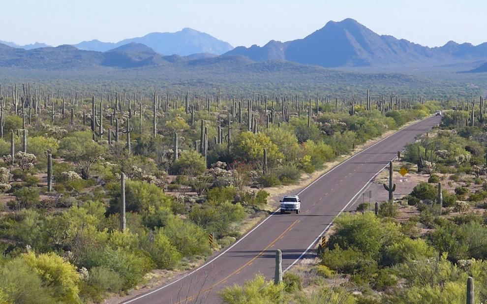 Arizona infrastructure drug trfficking