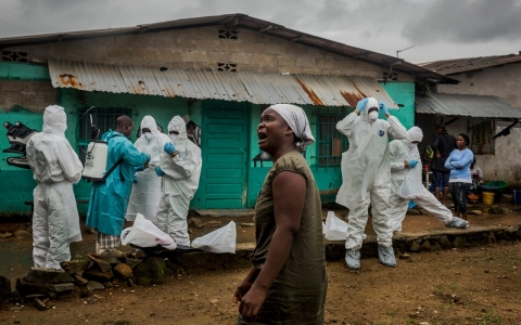 Thumbnail image for Number of new Ebola cases holding steady, WHO says