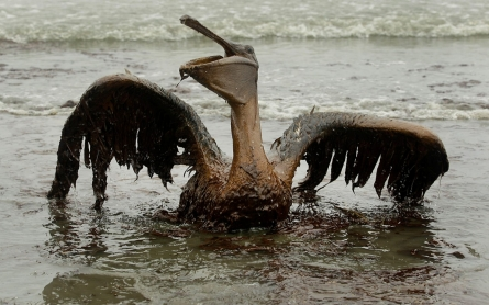 Deep-water drilling to resume near site of 2010 BP oil disaster