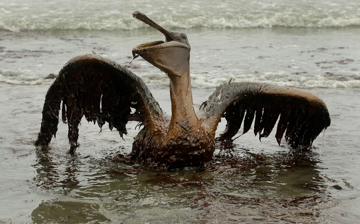 Drilling OK'd Near Site of BP Macondo reservoir | Al ...