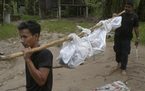 Thumbnail image for Thai police arrest man suspected of running deadly jungle camp