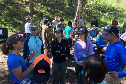 Gallatin National Forest in Montana, Courtney Frost, citizen scientists, wolverines