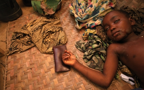 Thumbnail image for Ebola may have caused spike in Guinea's malaria deaths
