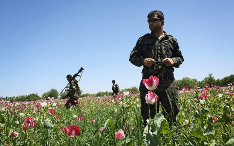 Thumbnail image for A struggle for peace in Afghan province most deadly for foreign troops