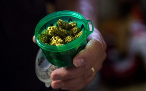 Thumbnail image for Trafficking Colo. pot riskier as neighboring states crack down on borders