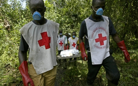 Red Cross warns against false use of its emblem in Cameroon