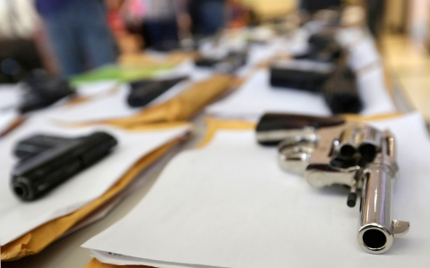 Thumbnail image for Activists sue three Chicago suburbs over gun sales