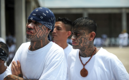 El Salvador supreme court designates street gangs as 'terrorists'