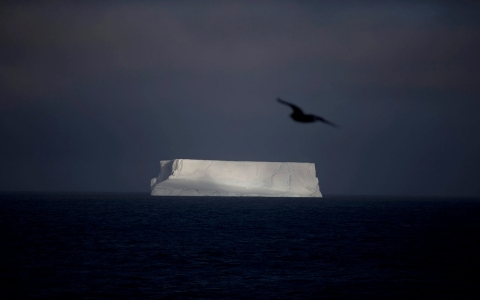Thumbnail image for Report: Burning all fossil fuels could thaw Antarctica, raise seas