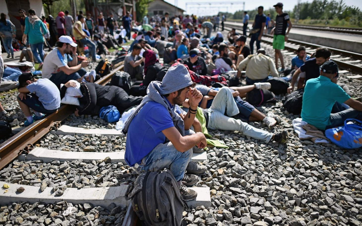 Dating refugees